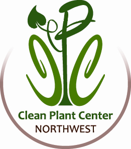 Clean Plant Center Northwest